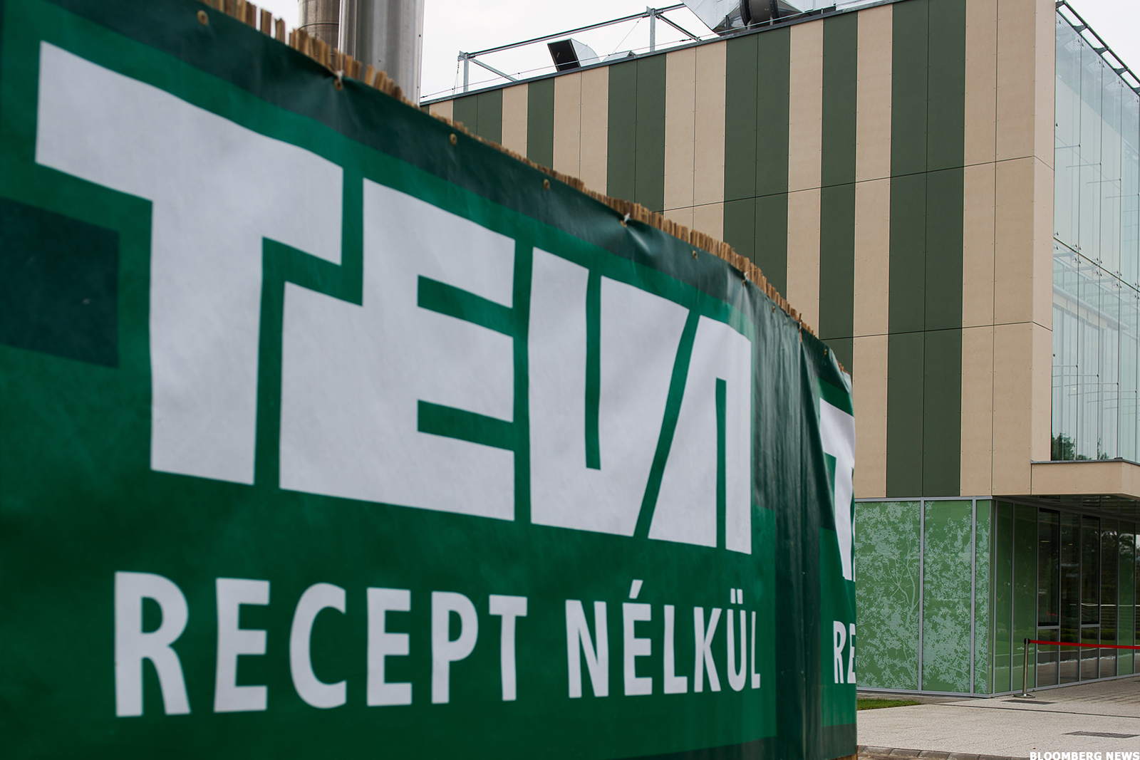 Hot Stock Overview: Teva Pharmaceutical Industries Limited (NYSE:TEVA)