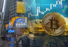 Google And Goldman Sach Are Investing With Blockchain Startup Veem